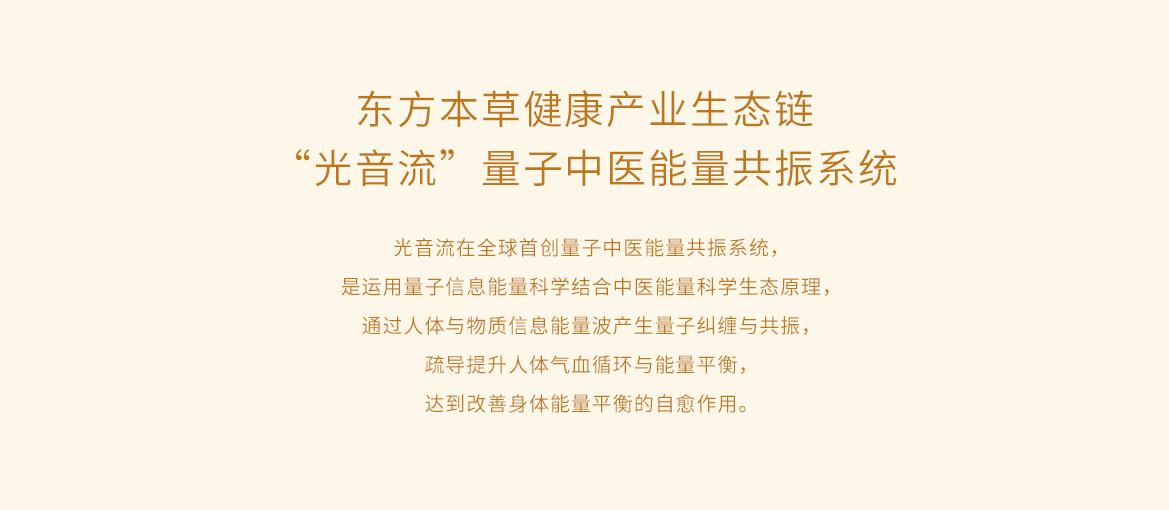 new__0000_量子中医能量共振系统.png
