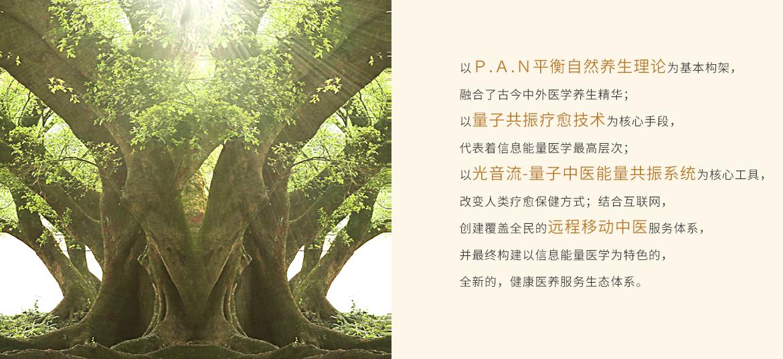 new__0001_健康医养服务生态体系.png