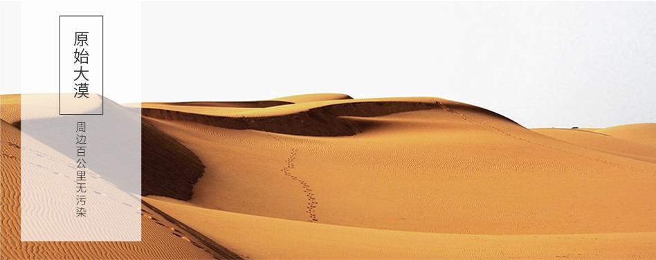 01原始大漠.jpg